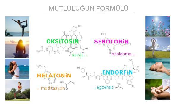MUTLULU�UN FORM�L�
