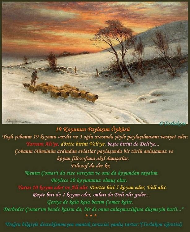 19 Koyunun Paylaşım Öyküsü